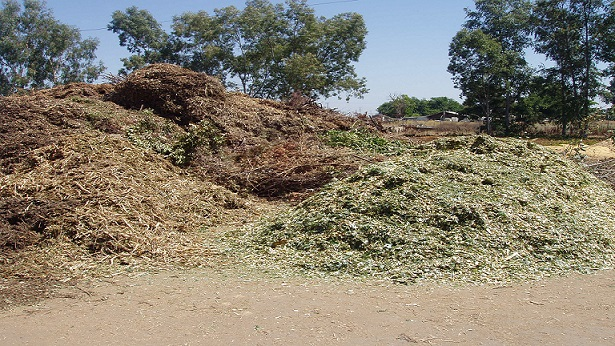 agricultural-waste-small